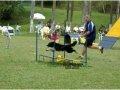 saltoemdistancia2