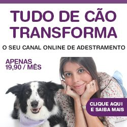 Tudo de Cão Transforma