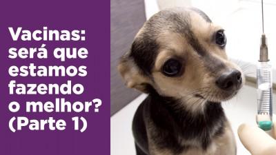 Vacinas - cães