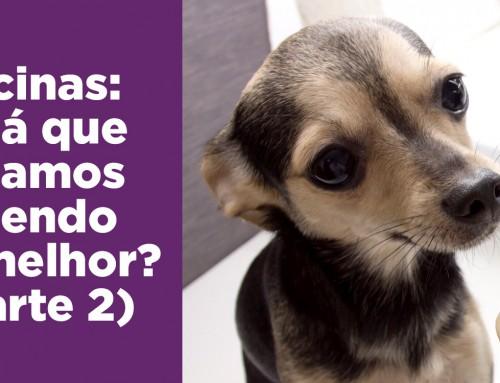 VACINAS: Qual o protocolo mais seguro no Brasil?